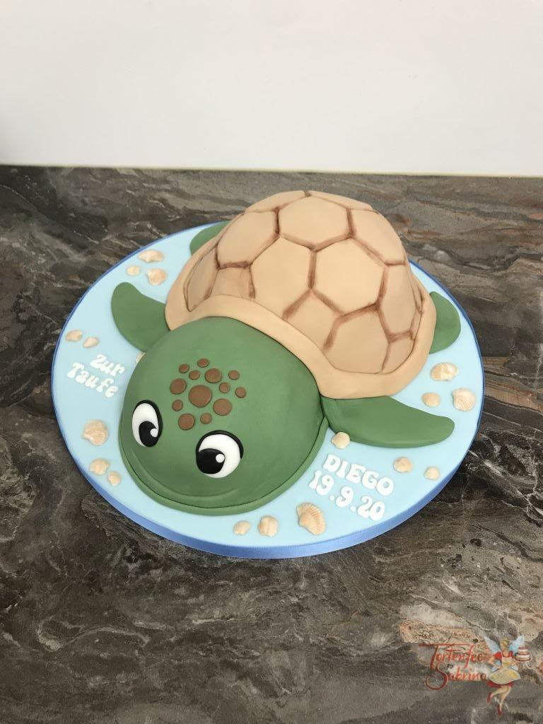 Tauftorte - Wasserschildkröte wurde aus 2 Torten zusammengesetzt und in den passenden Farben verziert und der Panzer aufgemalt.